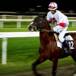 Photo de course à cheval sur hippodrome
