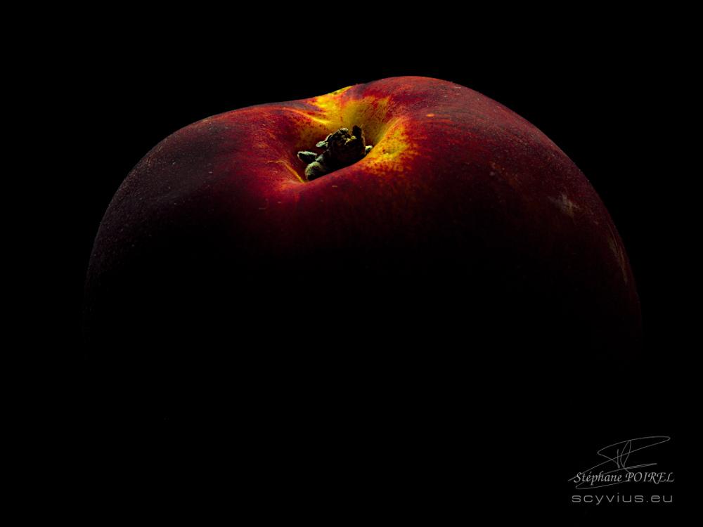 Photo en studio nectarine