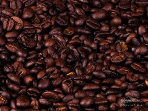Photo grains de café