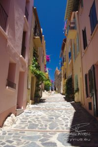 Photo rue dans Collioure
