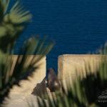 photo canon citadelle d'Alicante