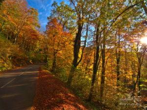 Photo montagne en automne